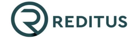 Reditus Consulting